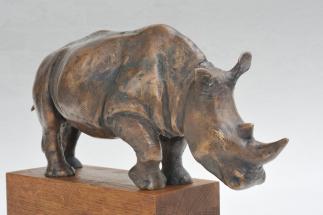 Nosorožec 1