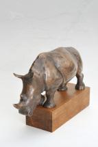 Nosorožec 4