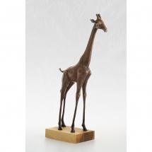 žirafa4